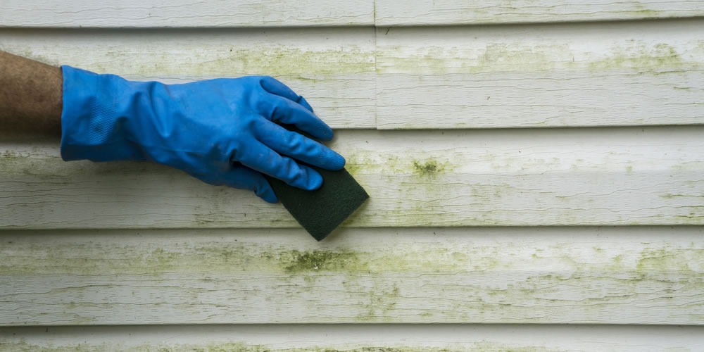 Removing Mildew From Vinyl Siding
